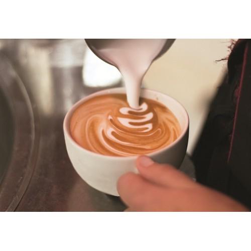 Profesjonalny ekspres do kawy 1 kolbowy